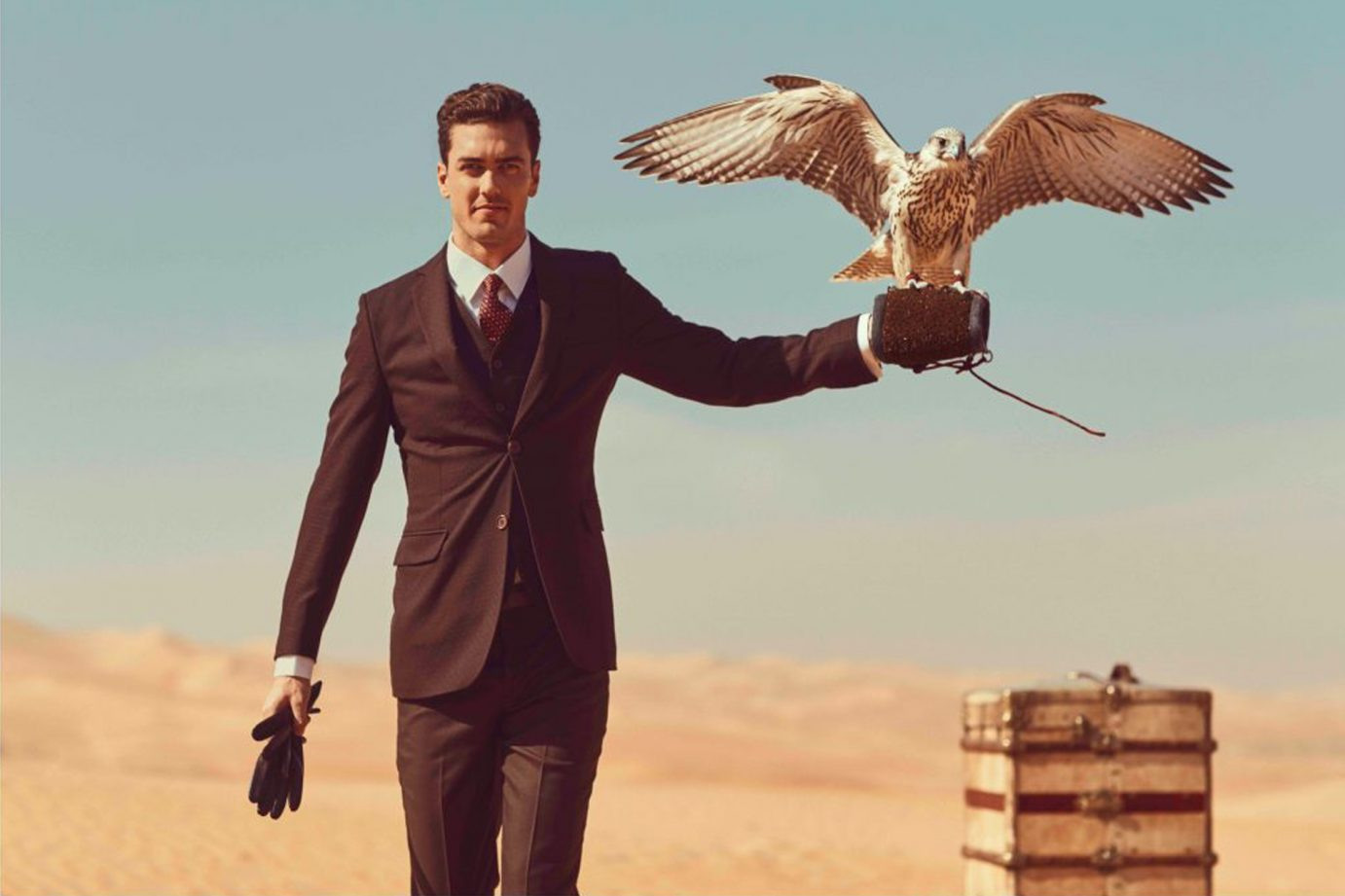 Etihad - man with falcon (final)
